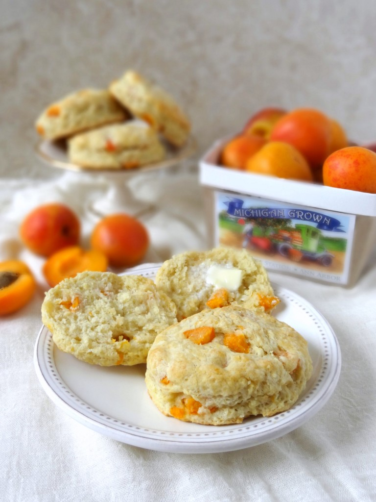 fresh apricot and ginger scones